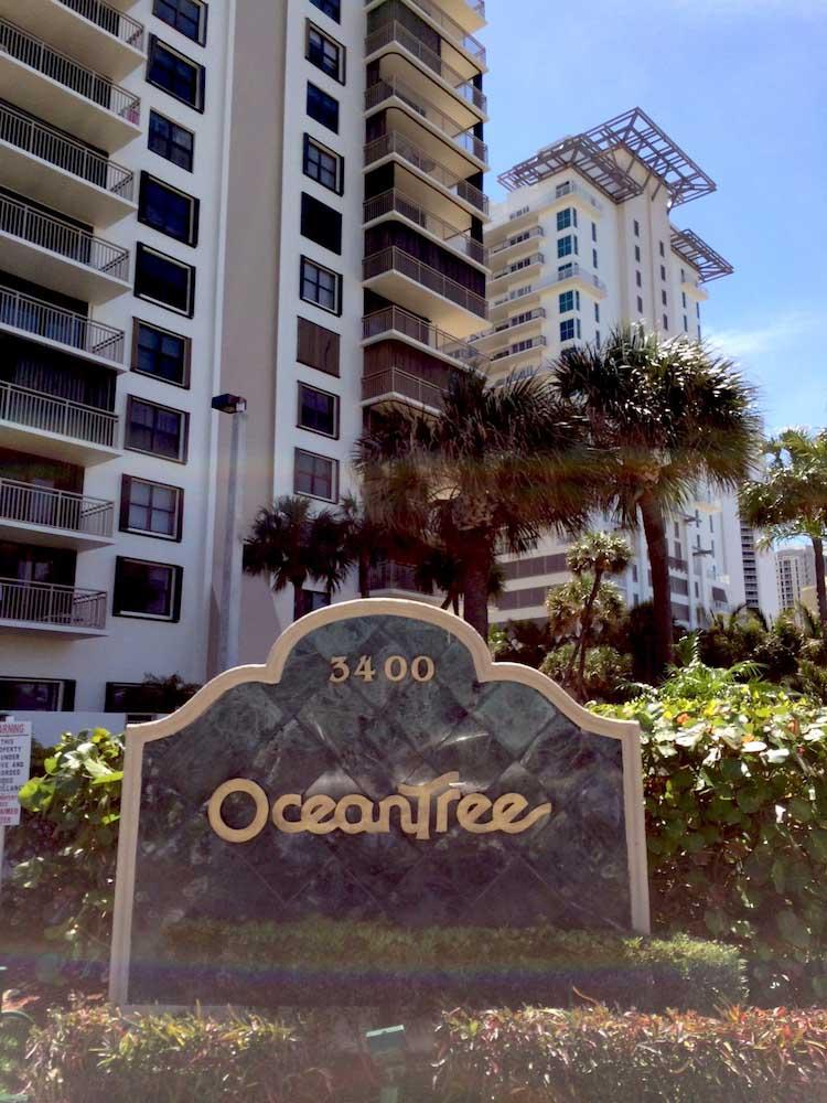 Oceantree2-pp