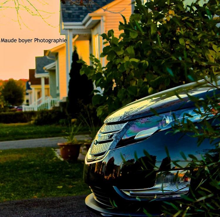 Magnifiques images d'une Volt par une photographe professionnelle