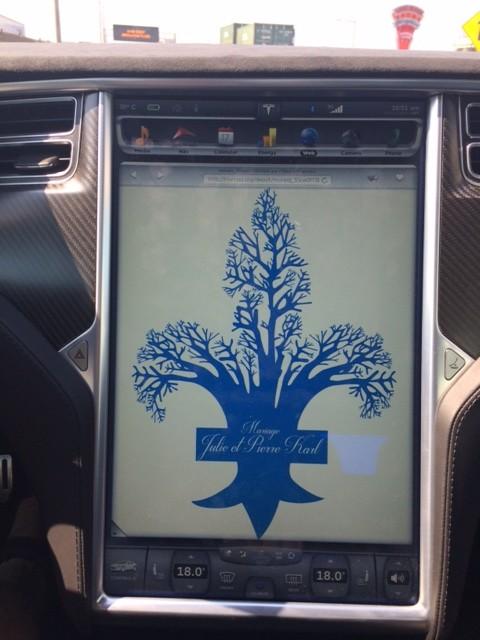 Tesla S P85 D-mariage-3